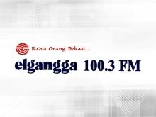 Radio Elgangga FM